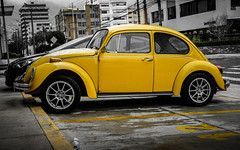 yellow beetle (Stephan Harmes) Tags: yellow car vw beetle auto gelb street strase ecuador line linie stadt city travel transport building rain regen gebäude