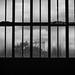 Zollverein VIII