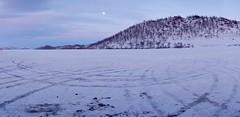 Baikal Moon Rising (setoboonhong ( On and Off )) Tags: travel lake baikal southern sibera russia landscape ice frozen tyre marks hill pine trees moon cold photosafari adventure
