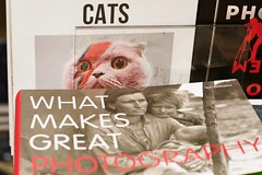 Tate Mod. 9apr17 (richardbw9) Tags: london city street uk england collage southwark tatemodern tate gallery art museum bankside book cover juxtaposition giftshop cats bowie ziggy stardust flash lightning cat funnycat whatmakesgreat photography lange dorothea greatdepression