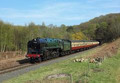 92214, Foley Park, 9 April 2017 (Mr Joseph Bloggs) Tags: severn valley railway svr railroad steam locomotive 92214 2100 foley park kidderminster bridgnorth bewdley train treno bahn