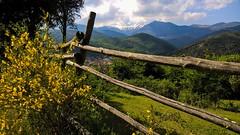 Barrière... Fence... PSP**** (Isa****) Tags: barrière fence psp paysage landscape montagne mountain genêts canigou neige snow pyrénées