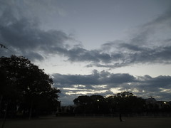 IMG_5546