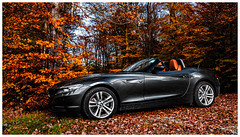 G1-3174-Auto (ac | photo) Tags: autumn trees light fall nature colors leaves car landscape fallcolors bmw z4 bmwz4