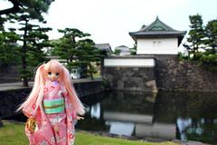 Near the Emperor (Pomidorika) Tags: japan pie tokyo momo doll maya walk peach kimono azone azonedoll