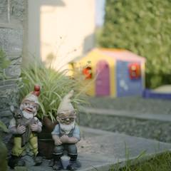 small people (emanuele_f) Tags: portrait 6x6 garden toys fuji minolta 400 cds dwarves nph autocord mediumfomat