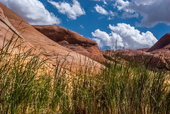Grass Meets Rock (helenehoffman) Tags: sky lake grass rocks kayak powell