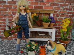 Ally Green Fingers (imajica63) Tags: cutie lien 112 azone picconeemo