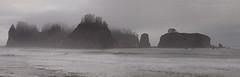 Rialto Beach (Nick_Fisher) Tags: usa mist motion tree beach water pine islands washington state pacific olympus wa rialto myst conifer waterinmotion nickfisher e620