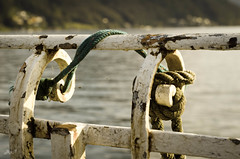 (-BigM-) Tags: photography schweiz switzerland tessin ticino fotografie monte bigm tamaro svizerra