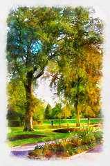 """Mowbray Park Autumn • <a style=""""font-size:0.8em;"""" href=""""https://www.flickr.com/photos/8232066@N02/15404072538/"""" target=""""_blank"""">View on Flickr</a>"""