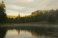 Cragside (Sue Langford) Tags: mist lake pentax northumberland nationaltrust cragside nationaltrustworkingholiday pentaxk100dsuper