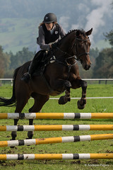 DSC05891_s (AndiP66) Tags: horse oktober macro sports sport schweiz switzerland mark sony luzern sp ii di if alpha tamron concours 77 pferd equestrian derby f28 ld horsejumping 70200mm wettbewerb 2014 springen eschenbach kantonsolothurn inwil reithof springreiten cantonsolothurn stleodegar andreaspeters pferdespringen 77m2 a77ii ilca77m2 77ii slta77ii