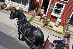 Recovered_JPEG Digital Camera_226 (Ultrachool) Tags: horses canada princeedwardisland stores charlottetown entrances