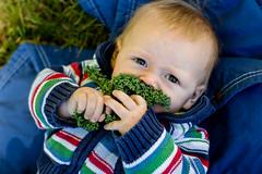 Kale monster (TheGiantVermin) Tags: eat devon kale