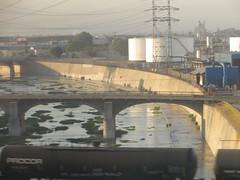 20140830 07 Los Angeles River