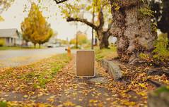 Brenizer (therealjatch) Tags: travel winter fall nikon spokane f14 pano 14 85mm sigma overcast suitcase pnw stiched brenizer d600 inlandnorthwest