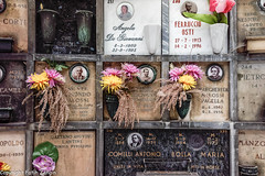 _DSC6252_DxO.jpg (FatihZengin) Tags: italien italy friedhof milan italia milano milaan italie itália italië cimitero monumentale milán 2014 italya milão mailand włochy cimiteromonumentale италия mediolan italiya