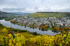 View over the southern part of Kues, Bernkastel-Kues, Mosel, Germany. (Jake.Blues01) Tags: river germany deutschland fuji fujifilm 1855mm 1855 fluss mosel bernkastel bernkastelkues kues xe2 xf1855mm xf1855 fujixe2 fujifilmxe2
