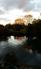2014-10-11 | 01 | King's meadow at sunset (Mark & Naomi Iliff) Tags: sunset thames reflections river meadow kings caversham