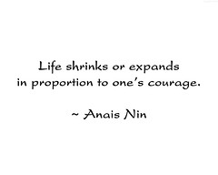 "Anais Nin Quote • <a style=""font-size:0.8em;"" href=""http://www.flickr.com/photos/34843984@N07/15609539831/"" target=""_blank"">View on Flickr</a>"