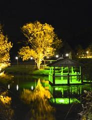 On Golden Ponds (Inner Vision Productions) Tags: robin festival night matt photography lights bright hill inner vision blythe diwali press isle wight