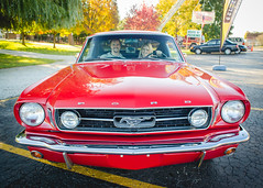 (JovenFotos) Tags: auto car museum golden illinois muscle il motors volo era musclecar goldeneramotors