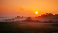 Golden Hour (Jonas Rask) Tags: sun fall nature landscape gold golden landscapes hill meadow hills hour fujifilm 23mm xt1