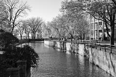 Lachine Canal (caribb) Tags: autumn trees canada fall blackwhite montréal quebec montreal district historic québec borough lachine 2014 lachinecanal