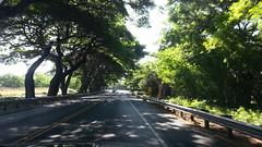 20141109_092946 (dntanderson) Tags: hawaii maui 2014 november09