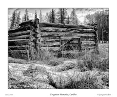 1211_0010_8x10bw (George Bruckner) Tags: forgottenmemories cariboo historicalcariboo caribootravel oldhomestead oldloghome homesteaders cariboosart cariboosfineartphotography georgebruckner geoargebrucknersphotography bruckner brucknersphotography watchlakecariboo 100milehousetravel winter snow caribooswinter hardtimes blackandwhite blackandwhitephotography bw bwphotography