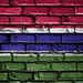 National Flag of Gambia on a Brick Wall