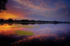 early  morning -lake Osborne (X street) Tags: landscapes waterscapes landscape waterscape fujifilmvelvia velviafilmsimulation velvia sunrise fujifilmxt10 sunriseatosbornelake osbornelake samyang12mmf20