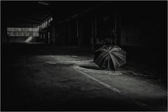 MORNINGLIGHT (Earl of Klueth) Tags: detmold altefabrikhalle earlofklueth regenschirm sonnenlicht
