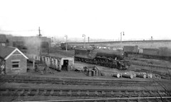Gratispool view at Copley Hill (Garter Blue) Tags: leeds copleyhill br er lner gresley a3 j50 j6 monochrome bw film gratispool steam railway engine loco shed 56c