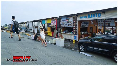 新江之島水族館49.jpg