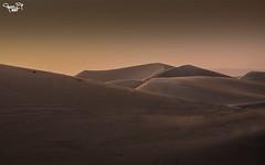 Desert Ahsa (A.Alwosaibie) Tags: nikon d90 aalwosaibie 2017 photo shot nikkor 18105mm f11 105mm iso100 1200 alhasa saudi desert