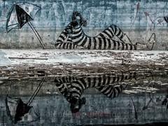 protected (blende9komma6) Tags: geschützt chania kreta greek graffiti strettart art swimmingpool reflection reflektier sunbath sonnenbad sunshade beach umbrella canon ixus