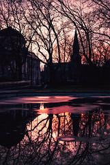 breakfast (ewitsoe) Tags: light shadows trees branches dawn winter reddish glow red crimson city cathedral poznan poland erikwitsoe ewitsoe nikon d80 35mm street cityscape urban