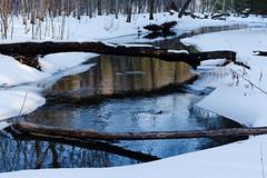 Indian Kill (fotofish64) Tags: water stream creek indiankill indiankillnaturepreserve park nature hike winter winterlandscape reflection reflectioninwater snow white outdoor glenville capitaldistrict newyork schenectadycounty pentax pentaxart smcpentaxfa35mmf2al k70 kmount texture