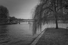 Square du Vert-Galant - 2017 (giorgio-pix) Tags: paris iledelacité seine pontdesarts