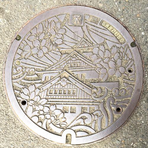 Drain Cover - Osaka