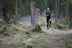 Åda Wild Boar Trail 2017-119 (Mauritzson) Tags: åda wild boar trail ådawildboartrail ådawildboar trailrunning trailrun running runners löpning trosa vagnhärad sweden spring