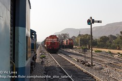 170222_21 (The Alco Safaris) Tags: alco dlw wdg3a dl560 rsd29 katni 14900 13023 indian railways broad gauge