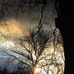Sparkling Sunset thumbnail