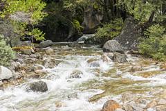 Merced River with Rocks - Yosemite NP (BlueVoter - thanks for 1.6M views) Tags: mercedriver yosemite nationalpark rapids river water rocks trees landscape scenery