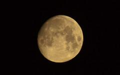 Luna (Beto Hangdog) Tags: canon eos 50d eos50d tamron 70300 tamron70300 kenko kenko2x luna moon