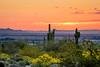 White Tank Sunrise (RiverBum - MN) Tags: whitetank arizona phoenix mountains sunrise hiking cactus sun