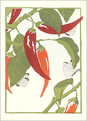 Chili pepper (Japanese Flower and Bird Art) Tags: flower chili pepper capsicum annuum solanaceae yoshiko yamamoto modern woodblock print japan japanese art readercollection