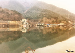 Busan, South Korea (cattan2011) Tags: reflections natureperfection naturephotography nature mountainscape mountains waterscape travelbloggers traveltuesday travelphotography travel landscapephotography landscape southkorea